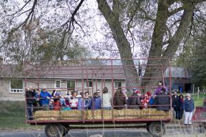 Ferme-et-Foret-Festival-12