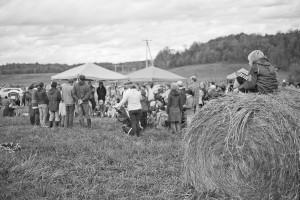 Ferme-et-Foret-Festival-35