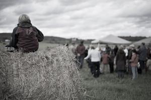 Ferme-et-Foret-Festival-36